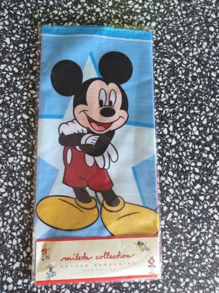 Kapesník dětský Disney 2 ks v balení