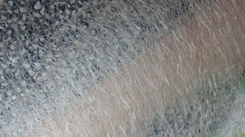 Organza pavučinka šíře 37-40 cm krémová